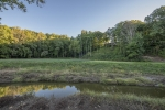 The home's ridgeline location allows for amazing wildlife viewing