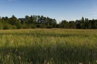 Deep Creek Farm