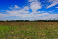 Eden Ag and Wildlife Tract