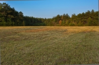 County Line Farm- Tract 1
